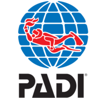 padi black vertical trasp