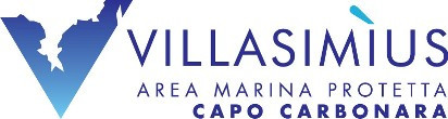 Logo AMP Amministrativo trasp